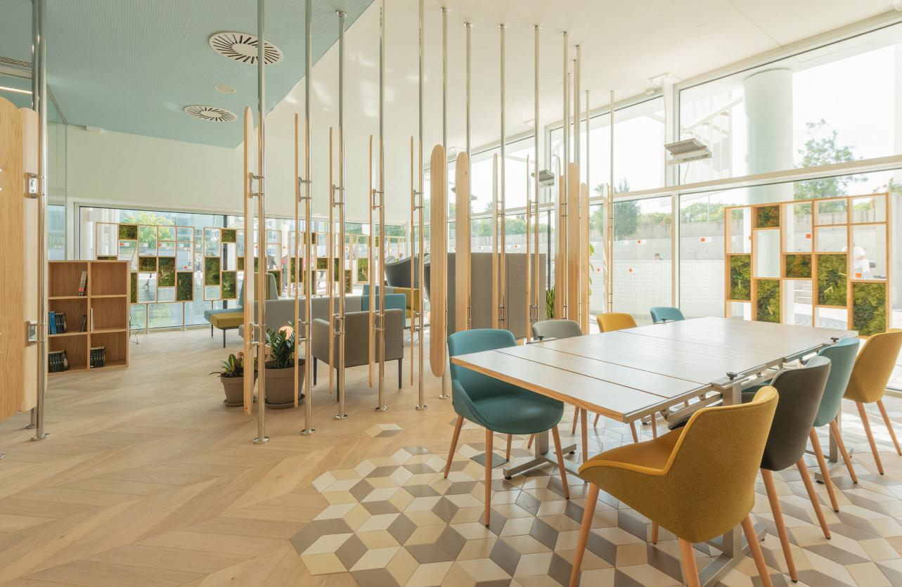 Therapeutic spaces, when the design of the hospital environment acts as a third caregiver 6