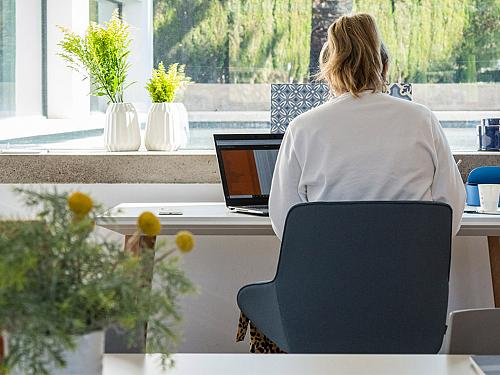 Workspaces to Beat the Heat and Stimulate the Senses
